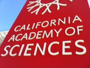 CAS california academy of sciences